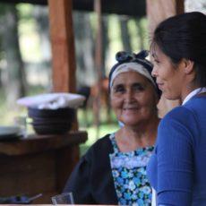 Il Cile delle comunità mapuche: partecipa alla feria Walung