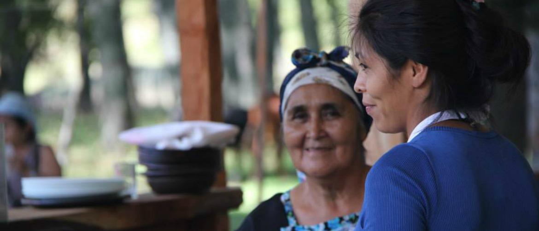 Il Cile delle comunità mapuche