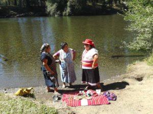 donne mapuche