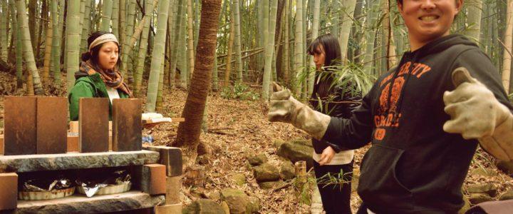 Volontariato in Giappone nelle foreste di bambù