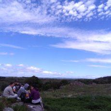 Vi racconto il mio campo di volontariato nel Parco Nazionale di Killarney, Irlanda