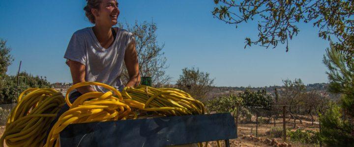 """""""Scegli il tuo campo…e scappa!"""": più di mille progetti di volontariato internazionale con lo SCI"""