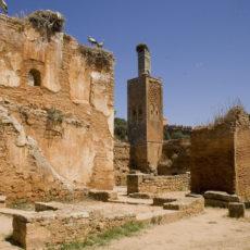 Marocco: tutela e conservazione di beni archeologici attraverso il volontariato