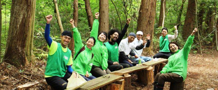 Giappone: volontariato a lungo termine per la salvaguardia delle foreste