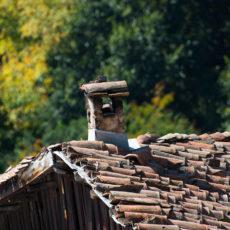 Emancipazione femminile e vita comunitaria: un campo in Bulgaria