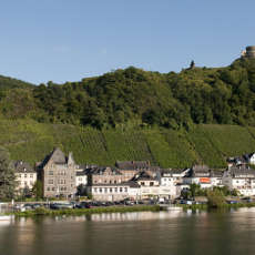 Stili di vita 100% sostenibili, semina e conservazione: un campo in Germania