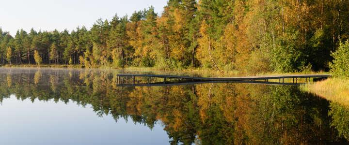 Ecologismo e tutela ambientale nella contea Jarvamaa: un campo in Estonia