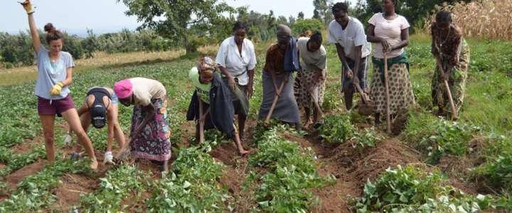 Cultura e animazione con la Kiburanga Community: campo in Kenya
