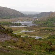 Conservazione del Killarney National Park: un campo in Irlanda