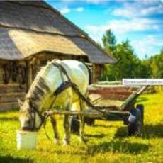 Rinnovare un museo a cielo aperto: un campo in Ucraina