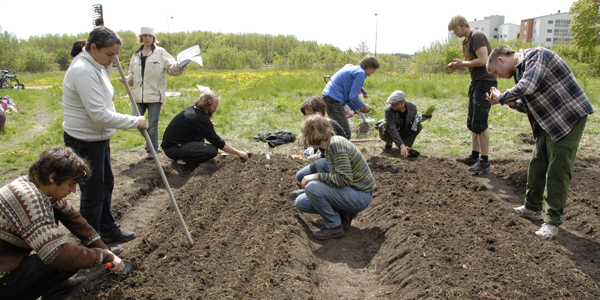 Agricoltura e permacultura: un campo ecologista in Svezia