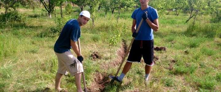 Prendersi cura di un Giardino Botanico: un campo in Armenia