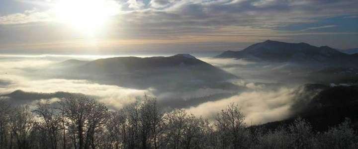 Ti piacerebbe coordinare un campo a Sant'Ambrogio, in Piemonte?