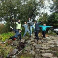 Ecologismo e alimentazione sostenibile: un campo in Islanda