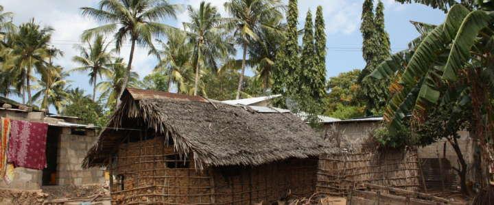 Promuovere lo scambio interculturale: un campo in Tanzania