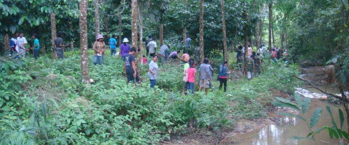 Un campo in Thailandia presso la comunità di Lang Ai Mee