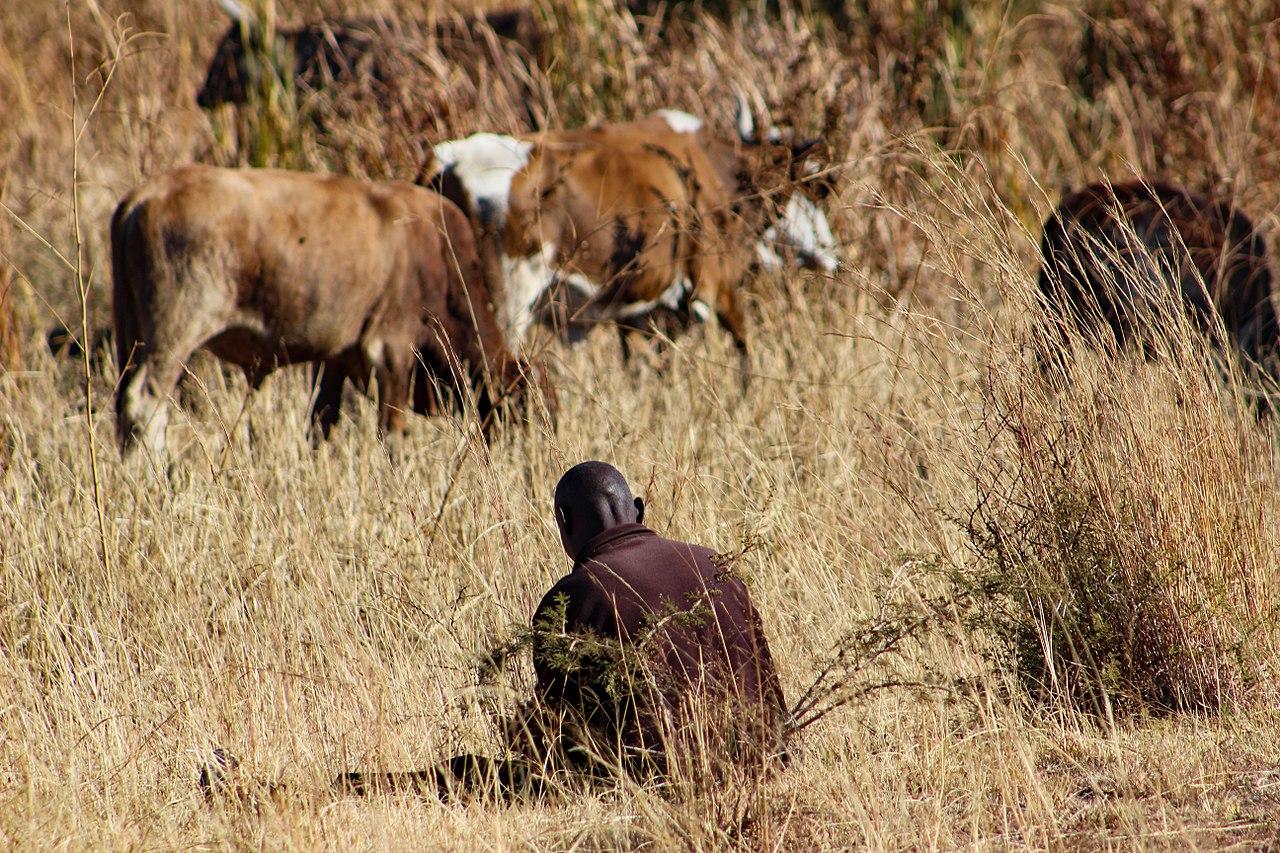 Siti di incontri Sud Africa Pretoria