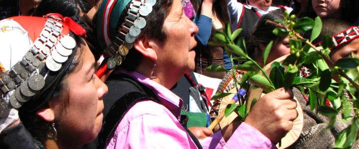 Costruire e organizzare la festa della cultura Mapuche (II): campo in Chile