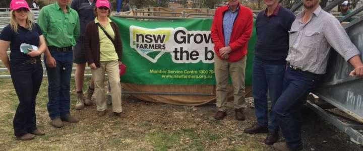 Supportare l'organizzazione del Goulburn Show:  un campo in Australia