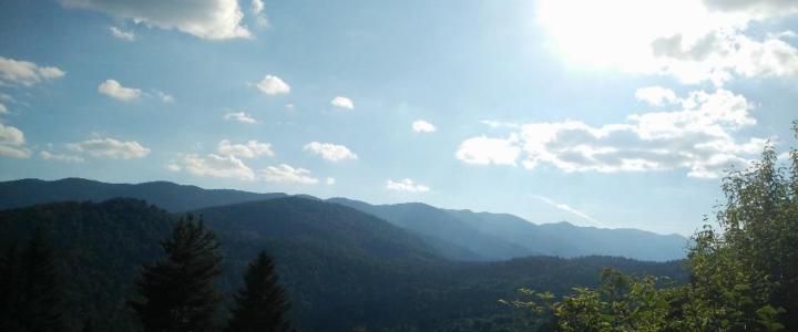 Una settimana da…orso: un campo tra le verdi colline della Croazia