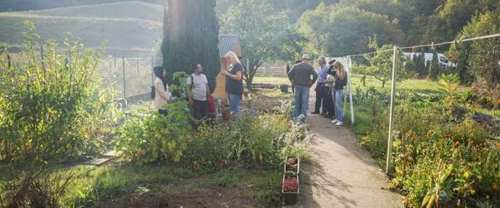 Il giardinaggio come pratica d'inclusione sociale: un campo a Lussemburgo