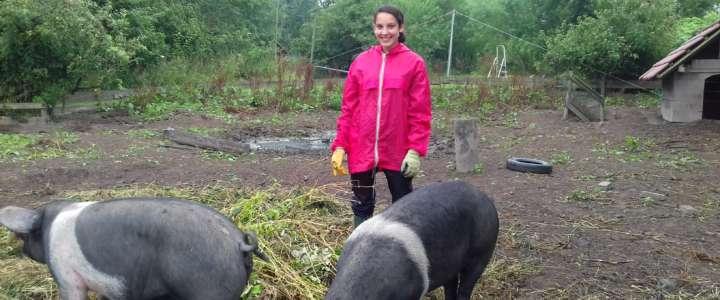 Promuovere l'ecosostenibilità attraverso la vita comunitaria: testimonianza da un campo in Germania