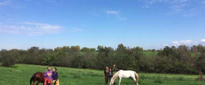Scoprire percorsi di inclusione sociale attraverso l'equitazione: un campo a Roma