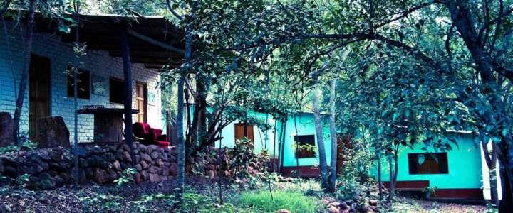 """Conservazione ambientale nella riserva """"Gotas de Agua"""": un campo in Perù"""