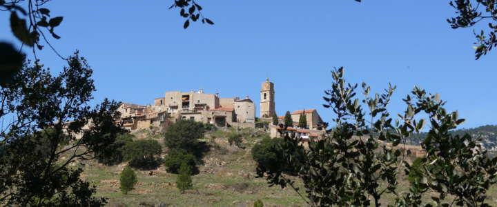 Portare alla luce un antico insediamento iberico: un campo in Catalunya