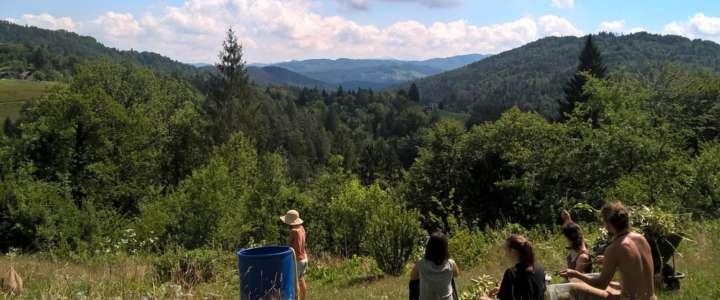 Tutelare gli animali in una fattoria ecologica: un campo in Slovenia