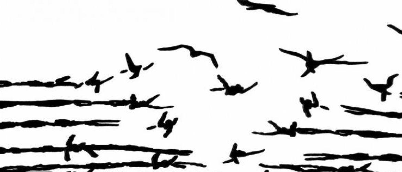 No Border Fest X edizione – Libertà di movimento oltre ogni confine