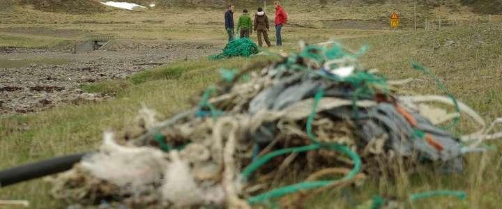 Tutela dell'ambiente e sensibilizzazione del territorio: un campo in Islanda