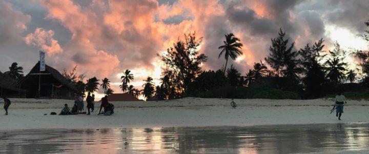 Tre settimane in Paradisola: testimonianza da un campo a Zanzibar
