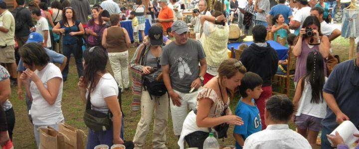 Supportare l'organizzazione della festa della cultura Mapuche: un campo in Cile