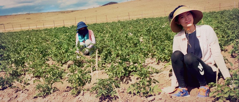 sviluppo ecosostenibile mongolia campo di volontariato internazionale
