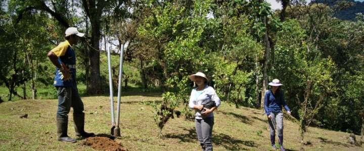 Un campo in Equador: focus sul clima e stile di vita sostenibile