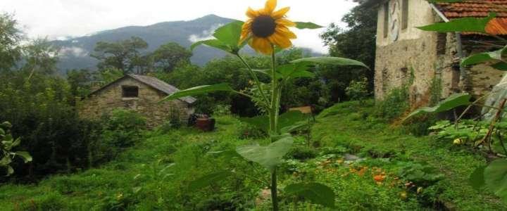 Un weekend nella natura: un mini-campo nell'ecovillaggio di Monte Venere