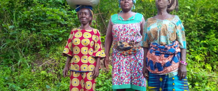 Un campo di volontariato per supportare le famiglie contadine in Togo