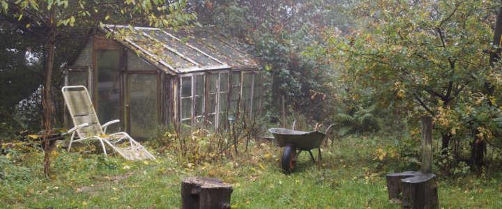 Ritorno alle radici: un campo di volontariato in Germania