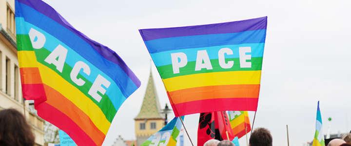 """SCI Switzerland cerca un/a volontario/a EVS per """"The Swiss Peace Council"""""""