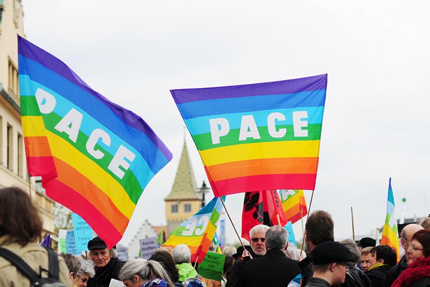 """SCI Switzerland cerca un volontario/a EVS per """"The Swiss Peace Council"""""""