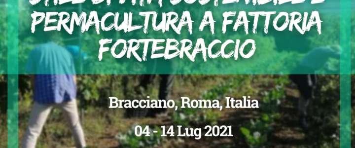Workcamp in Italia: Stile di vita sostenibile e permacultura a Fattoria Fortebraccio