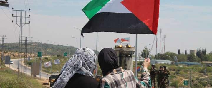 Comunicato SCI Italia: Solidarietà nei confronti del popolo palestinese che (r)esiste.