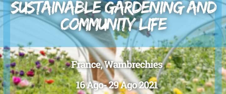 Workcamp in France: Sustainable Gardening and Community Life