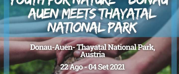 Workcamp in Austria: Youth for Nature – Donau-Auen meets Thayatal National Park