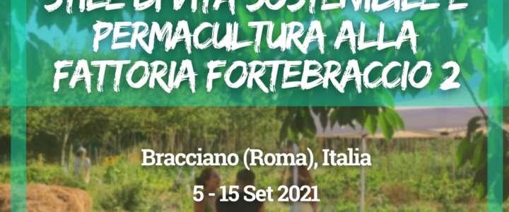 Workcamp in Italia: Stile di vita sostenibile e permacultura alla Fattoria Fortebraccio