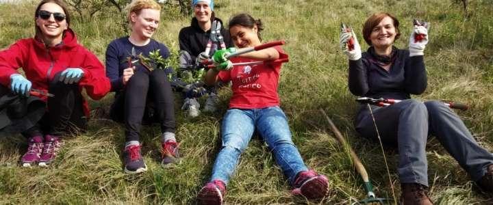 Call per partecipanti: Greenbelt Camp (campo di volontariato finanziato)